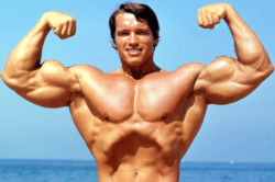 Bodybuilding vs Body Sculpting - Arnold Shwarzenneger