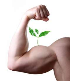 Are you working out hard enough--biceps growing
