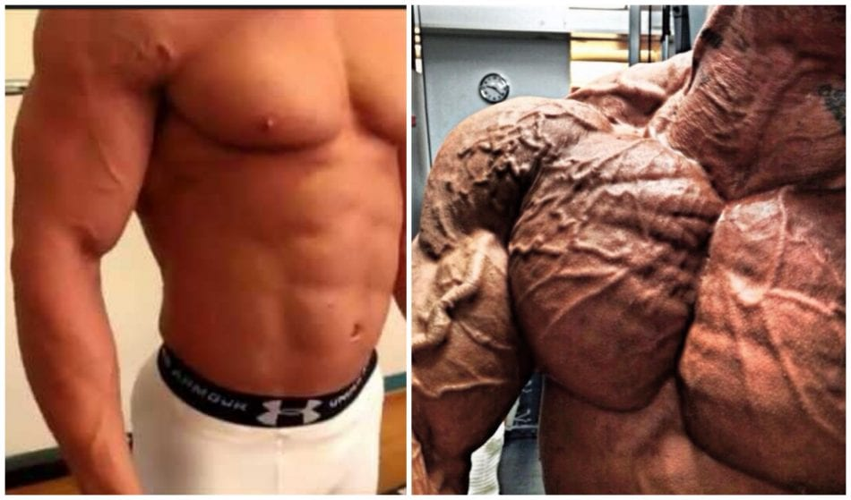 Learn How to Become Vascular - Bodybuilders' levels of vascularity